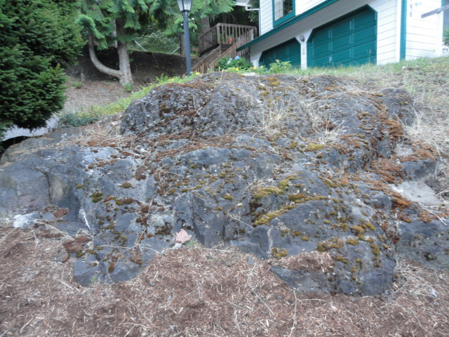 Lucid and Ironic, a weblog: Southern Oregon rockhounding